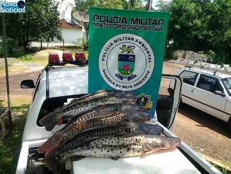 Left or right pescado aqudiauana piracema 28 de novembro de 2017