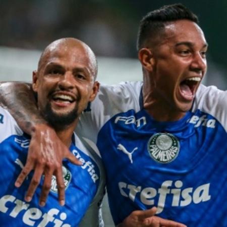 Left or right felipe melo comemora gol do palmeiras contra o melgar 1552434497996 300x300