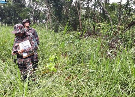 Left or right desmatamento inoc ncia pma ap. taboado 6 de mar o de 2020.jpg1