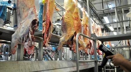 Left or right carne bovina