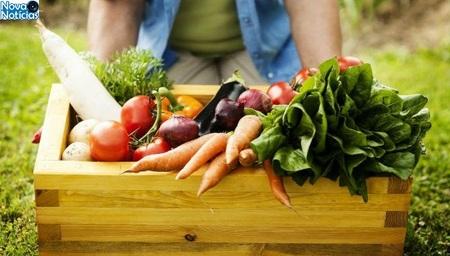Left or right seguran a alimentar