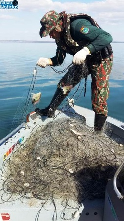 Left or right pesca em anaurilandia dia 01 de maio