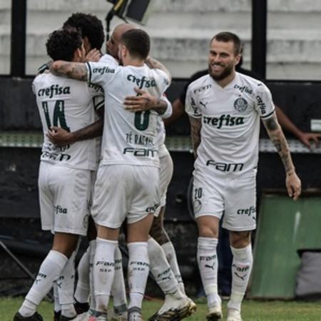 Left or right jogadores do palmeiras comemoram gol de luiz adriano contra o vasco no brasileirao 2020 1604868755616 v2 300x300