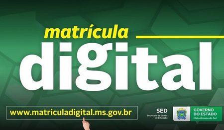 Left or right matricula digital 19 730x425