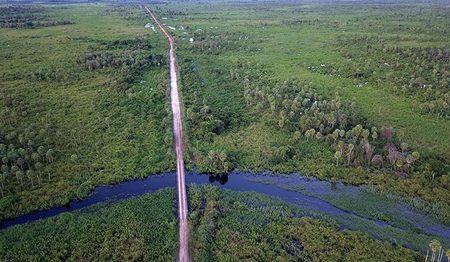 Left or right pantanal nabileque cheia foto chico ribeiro 6 730x425