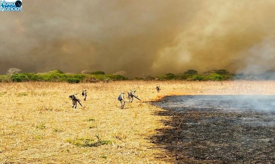 Center queimadas no pantanal 768x425 730x435