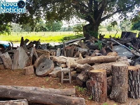 Left or right madeira armazenada ilegalmente pma1