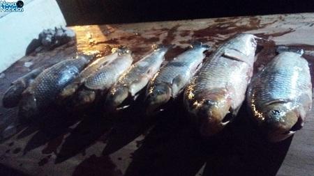 Left or right pescado bataguassu 20 de agosto de 2017. 1 bom
