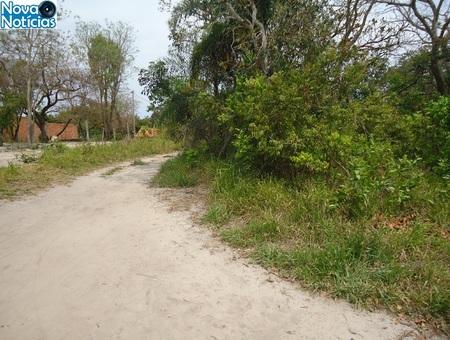 Left or right rvores cortadas app gua clara 15 set 2016 site